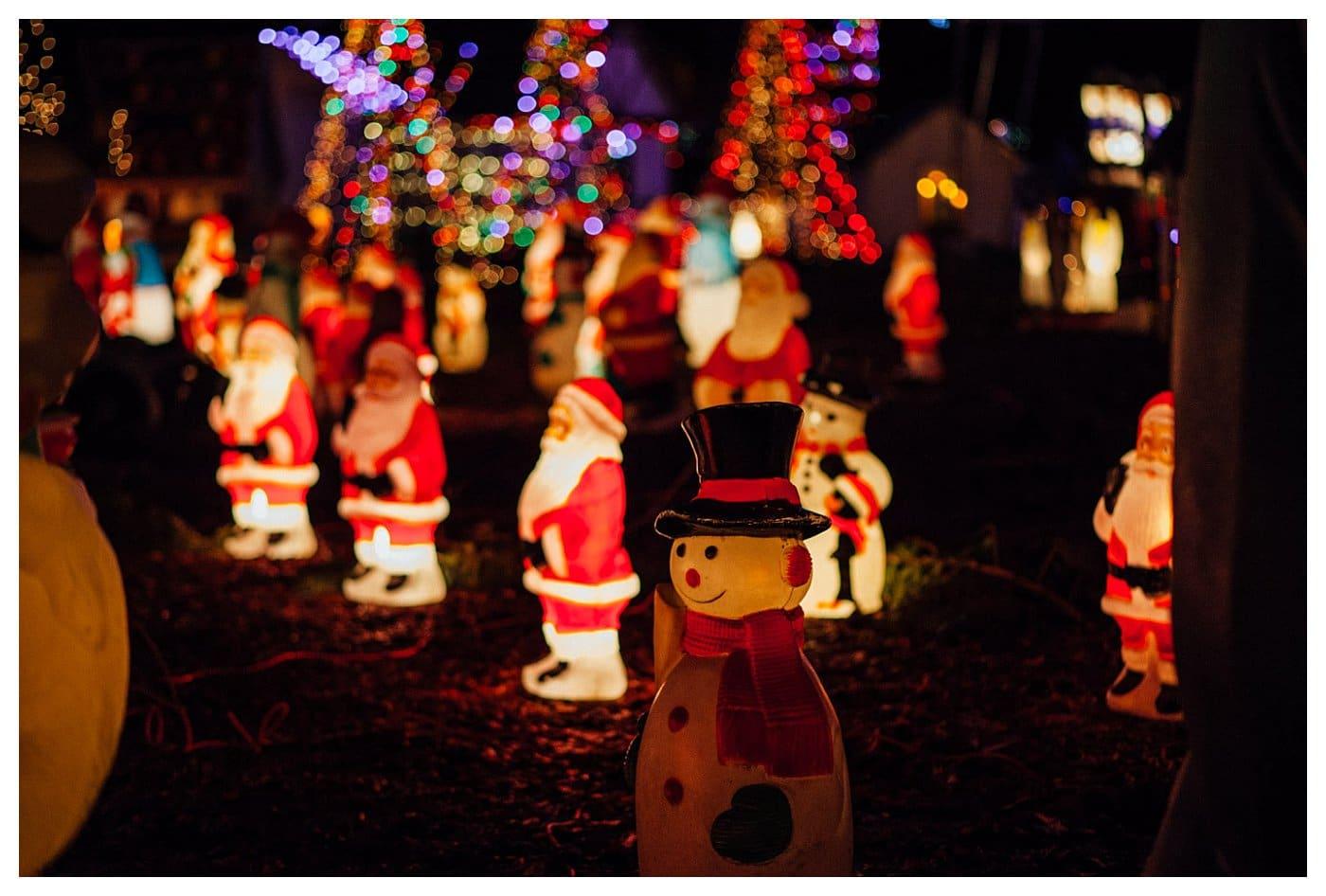Stanley Park Christmas