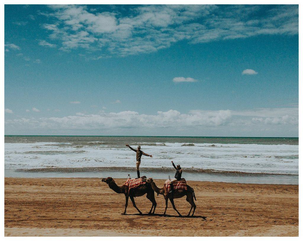 Mazagan Beach Resort and Marrakech
