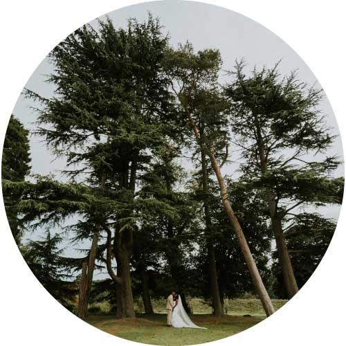 Reel Weddings Northbrook Park